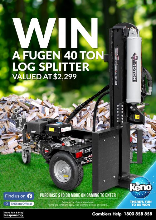 WIN a 40 TON Log Splitter